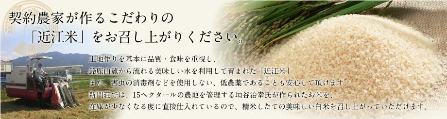 契約農家が作るこだわりの「近江米」をお召し上がりください